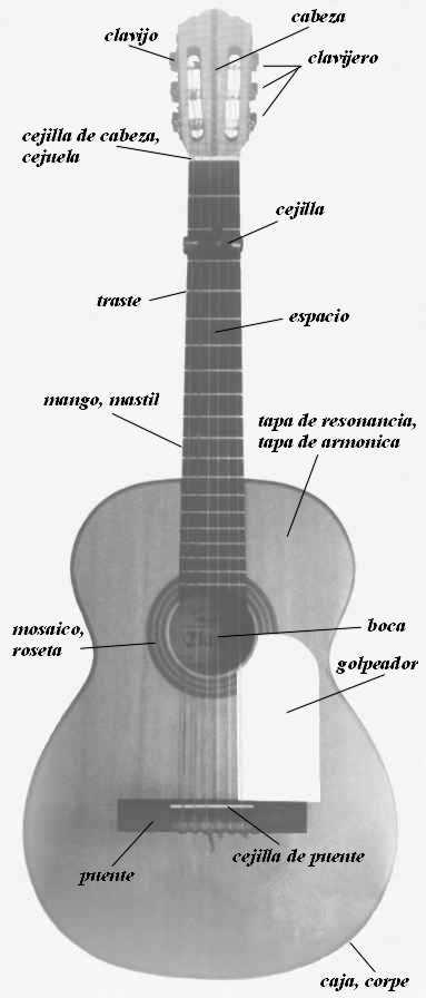 Гитара фламенко - схема